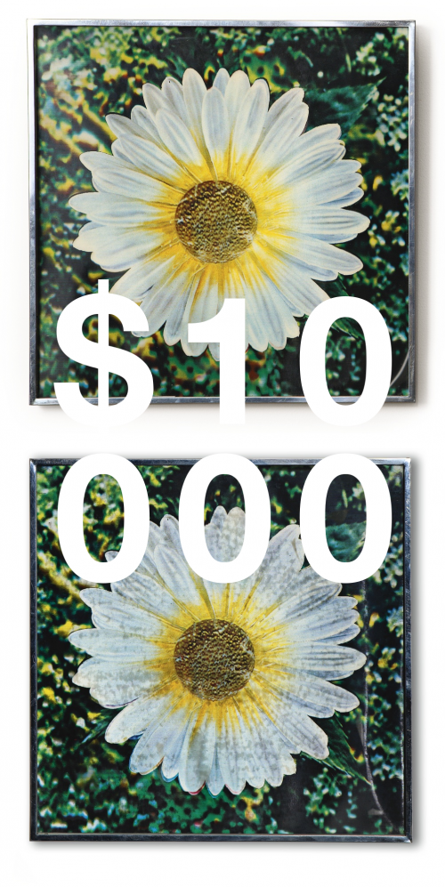Andy Warhol, Untitled (los Angeles Daisy) [two Works]